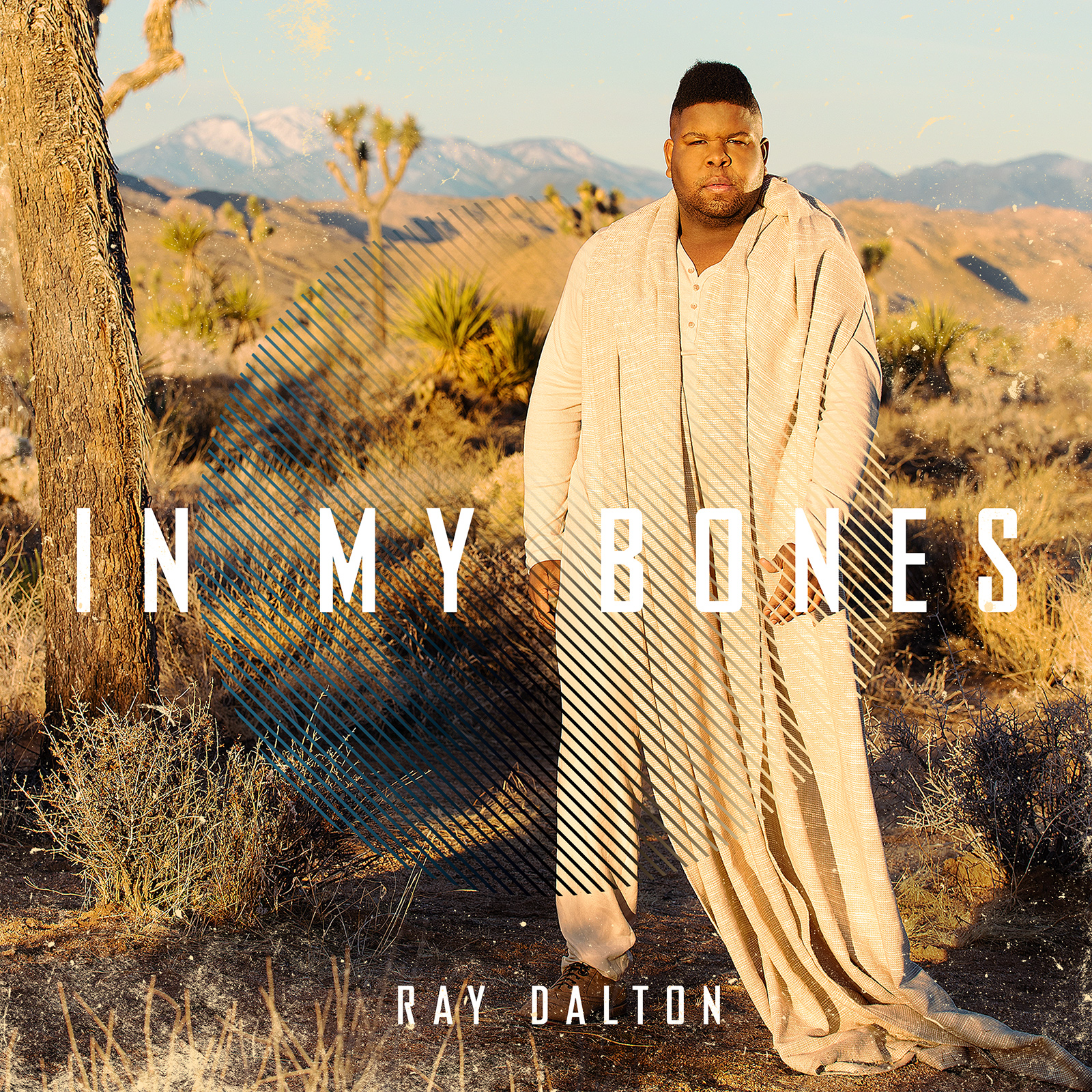Ray Dalton - In My Bones